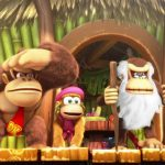 Donkey Kong Country en film